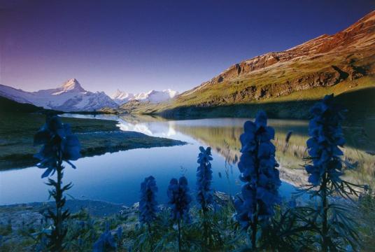 Bachalpsee, Suíça.