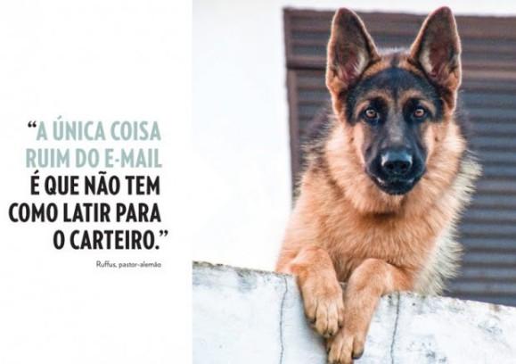 cães 1a 580