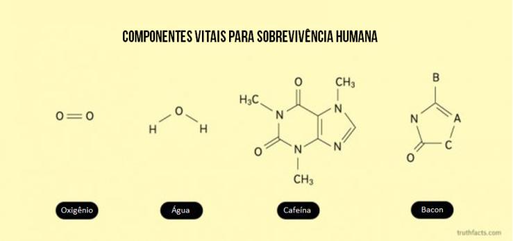 Ingredientes vitais para...