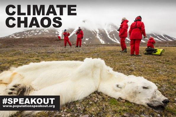 Os fiordes ocidentais em Svalbard, na Noruega, que normalmente congelar no inverno, manteve-se durante toda a temporada sem gelo. Este urso seguiu para o norte, à procura de gelo do mar adequado para caçar a. Não encontrando nada, ela finalmente desmoronou e morreu.