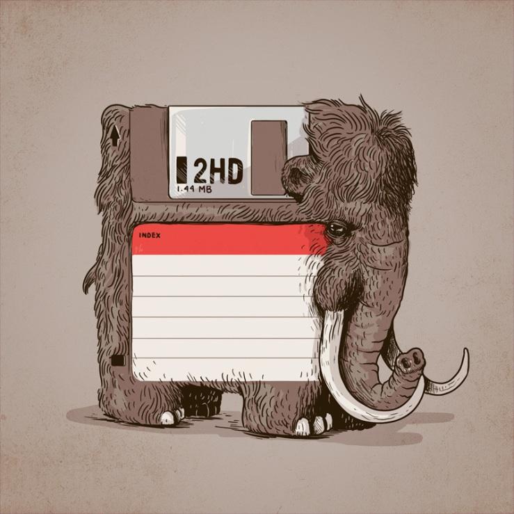 floppy_800