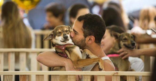 31mai2015---homem-abraca-e-beija-cachorro-durante-evento-para-adocao-de-caes-na-lagoa-rodrigo-de-freitas-no-rio-de-janeiro-1433102185832_956x500
