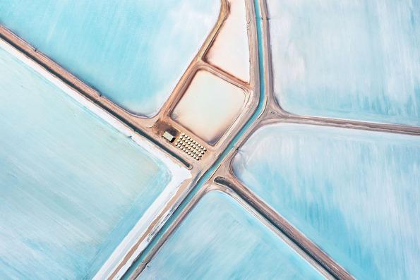 blue-fields