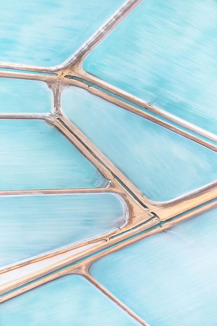 blue-fields4