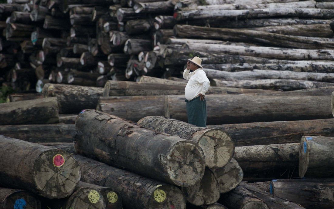 CHINA-MYANMAR-TIMBER-LOGGING-JAIL-CRIME-ENVIRONMENT
