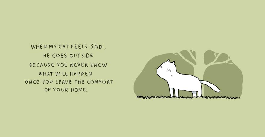 Quando meu gato se sente triste, ele sai de casa porque você nunca vai saber o que vai acontecer uma vez que saiu de sua zona de conforto.