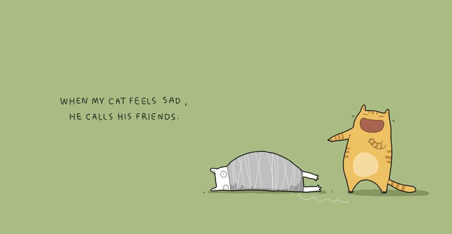 Quando meu gato se sente triste, ele chama seus amigos.