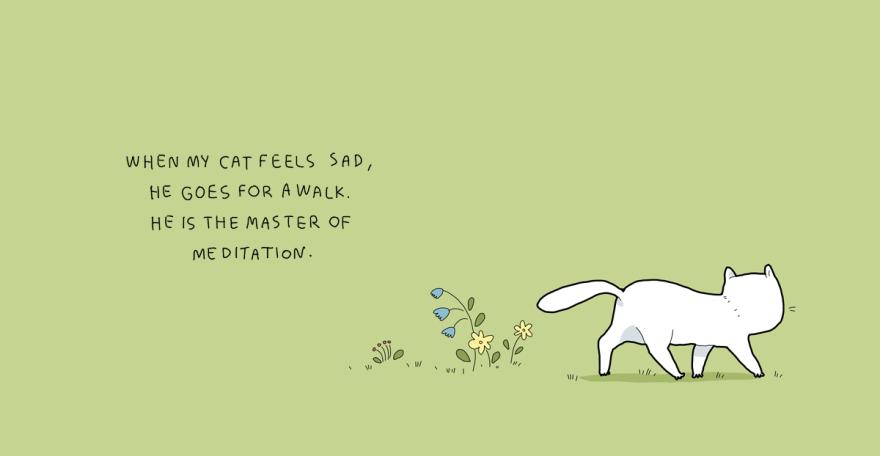 Quando meu gato se sente triste, ele vai passear um pouco. Ele parece ser um mestre na arte da meditação.