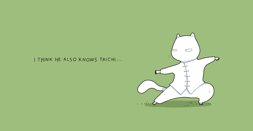 Eu até acho que ele sabe as técnicas do Tai Chi Chuan...