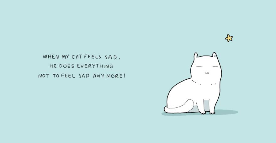 Quando meu gato se sente triste, ele faz de tudo para não se sentir assim novamente!