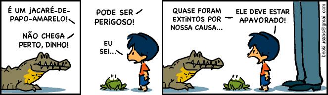 animal-em-extincao-armandinho-tirinhas-imagem-para-facebook