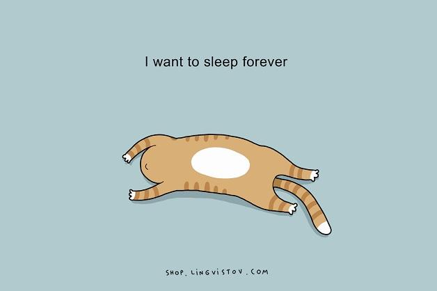 Eu quero dormir pra sempre.
