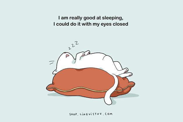 Eu sou realmente bom em dormir. Eu poderia fazer isso com meus olhos fechados.