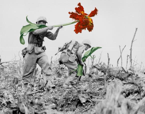 flores-na-guerra-1
