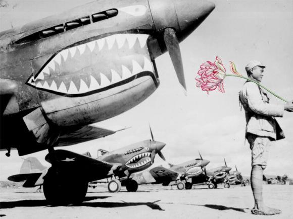 flores-na-guerra-2