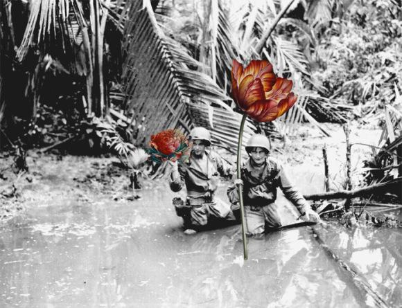 flores-na-guerra-3