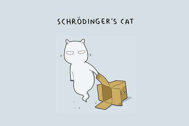 O gato de Schrödinger.